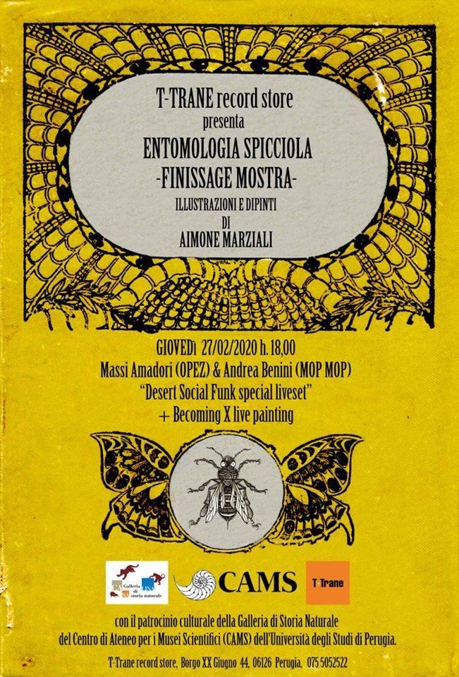 Finissage di Entomologia Spicciola