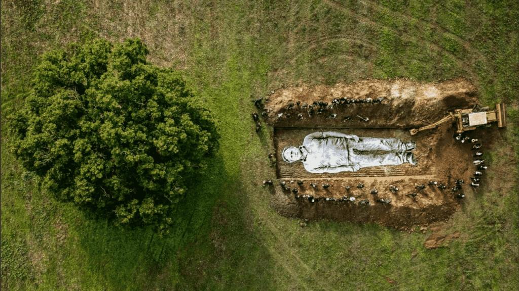 fonte: https://www.vivoumbria.it/2020/11/14/lomelia-contadina-di-alice-rohrwacher-e-jr-contro-le-monocolture-intensive-e-i-pesticidi/]]