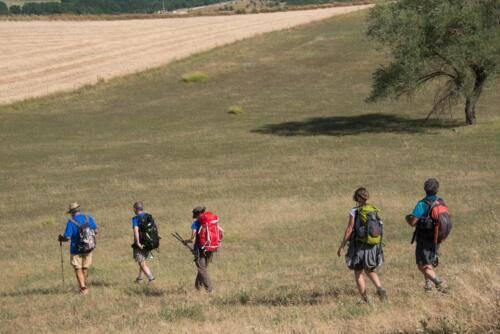 Cammino-Terre-Mutate-Tappa-1-Fabriano-Matelica-campi-di-grano