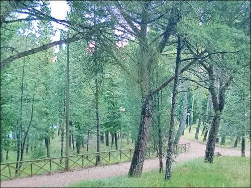 Frigolandia_viale_parco
