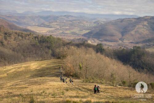 Via di Francesco 02 2020-02571